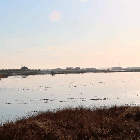 banner_ecosistema_invierno